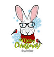 cristmas with cute rabbit face in old vector image vector image