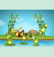 five frogs living by the pond vector image vector image
