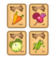 vegetables card set vector image
