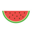 watermelon icon in a flat style vector image