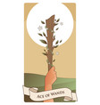 aces tarot cards wands hand holding a rod vector image vector image