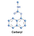 carbaryl is a chemical in the carbamates vector image vector image
