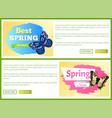 spring sale labels horizontal posters butterflies vector image vector image