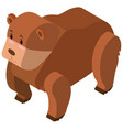 3d design for brown bear vector image vector image