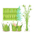 bamboo tree isolate collection set vector image vector image