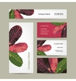 Business cards design botanical theme vector image vector image