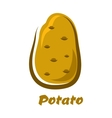 Cartoon brown organic potato vegetable vector image vector image