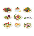 collection of various salads lying on plates and vector image vector image