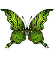 greengold butterfly vector image vector image