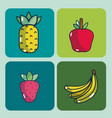 set of delicious food vector image