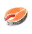 Steak of red fish salmon for sushi vector image vector image