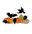 ravens and pumpkins vector image