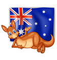 A kangaroo in front of the Australian flag vector image vector image