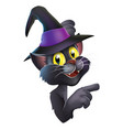black cat in witch hat vector image