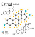 chemical formula of the estriol molecule vector image