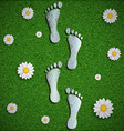 Footprint with a chip on the surface of the grass vector image vector image