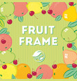 organic fruit frame decor vector image