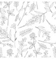 seamless pattern with hand drawn wild herbs vector image vector image