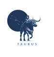 sign of the zodiac taurus bull vector image