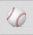 realistic baseball isolated design vector image