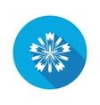 Cornflower blue poppy centaury knapweed flower vector image vector image