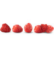 set of realistic raspberries isolated against a vector image vector image
