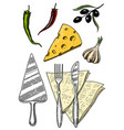 set pizza and ingredients for cooking spatula vector image vector image