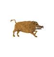 Wild Boar Razorback Bone In Mouth Walking Retro vector image vector image