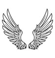 wings bird feather black white tattoo hawk ange vector image