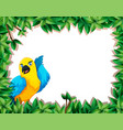 a parrot in nature frame vector image vector image