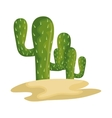 cactus mexican plant icon vector image vector image