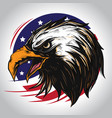 eagle character america vector image