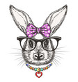 fashion bunny girl with bow vector image vector image