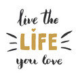 live life you love lettering handwritten sign vector image