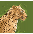 Portrait of a leopard on abstract background vector image