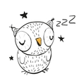 Sleeping Owl vector image vector image