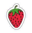 strawberry fresh isolated icon vector image vector image