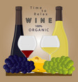 the wine vector image vector image
