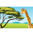 cartoon animal vector image vector image