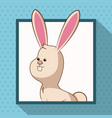 cute rabbit frame picture vector image vector image