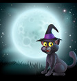 halloween full moon witch cat vector image vector image