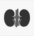 kidney human renal icon isolated vector image vector image