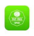 nutmeg icon green vector image vector image