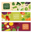 organic vegetables horizontal banners vector image
