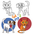 Pets cat and dog vector image