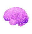 cartoon neon a human brain vector image vector image