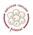 dumplings vector image vector image