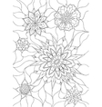 Flowers coloring page vector image