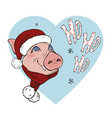 pig wearing a scarf and santa hat vector image