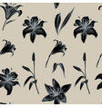 seamless pattern of lilly flower hand vector image